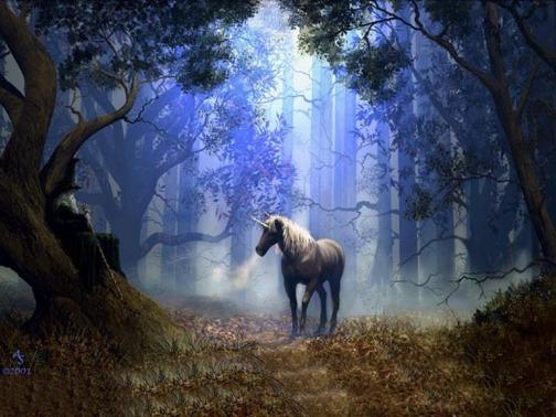 unicorn-dimensions-unicorns-17788267-1024-768